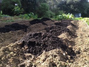 Windrow Compost is not the ideal way to compost